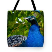 Royal Bird Tote Bag