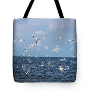 Royal Blue Ocean Tern Tote Bag