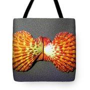 Royal Cloak Scallop Seashell  Tote Bag
