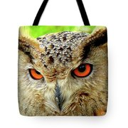 Royal Owl Tote Bag