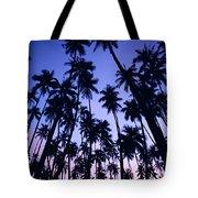 Royal Palm Grove Tote Bag