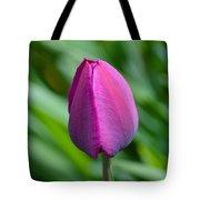 Royal Tulip Tote Bag