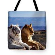 Big Cats Tote Bag