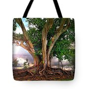 Rubber Tree Tote Bag