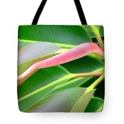 Rubber Tree - New Leaf Tote Bag