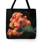 Rubiaceae Tote Bag