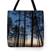 Ruby Beach Through The Trees Tote Bag