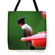 Ruby Red Throated Hummingbird On Feeder Tote Bag