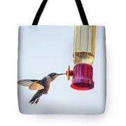 Ruby-throated Hummingbird 5 Tote Bag