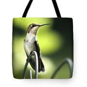 Ruby-throated Hummingbird Tote Bag by Christina Rollo