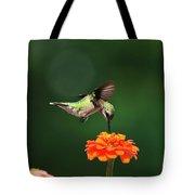 Ruby Throated Hummingbird Feeding On Orange Zinnia Flower Tote Bag