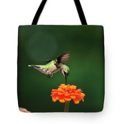 Ruby Throated Hummingbird Feeding On Orange Zinnia Flower Tote Bag by Christina Rollo