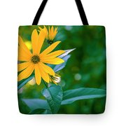Rudbeckia Flowers In Bloom Tote Bag