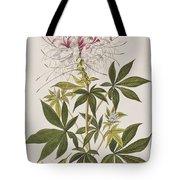 Ruff-necked Hummingbird Tote Bag