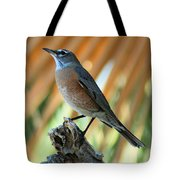 Rufous-backed Robin Tote Bag