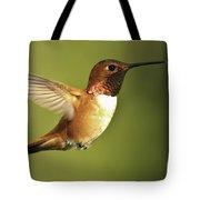 Rufous Hummingbird Tote Bag