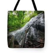 Rufus Morgan Falls Tote Bag