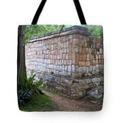 Ruins Chichen Itza 1 Tote Bag