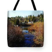 Ruins In Autumn Tote Bag