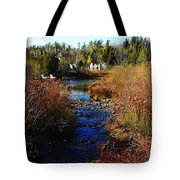 Ruins In Fall Tote Bag