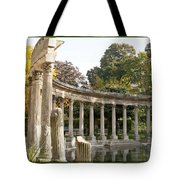 Ruins In The Park Tote Bag