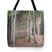 Ruins Of The Baroque Chapel Of St. Mary Magdalene Tote Bag
