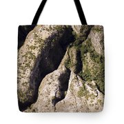 Runiiforme Dissected Sandstone Hills Tote Bag