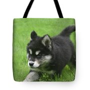 Running Alusky Puppy Dog Stretching Out His Stride Tote Bag