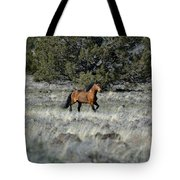 Running Bachelor Stallion Tote Bag