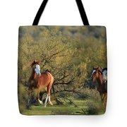 Running In The Desert Tote Bag