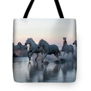 Running Into The Sunset Tote Bag