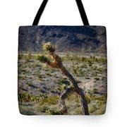 Running Man, Death Valley Tote Bag
