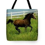 Running Steed Tote Bag