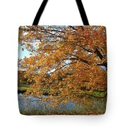 Rural Autumn Country Beauty Tote Bag