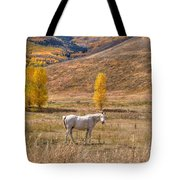 Rural Colorado  Tote Bag