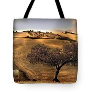 Rural Spain View Tote Bag
