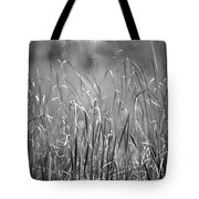 Rushes Tote Bag by Mike Evangelist