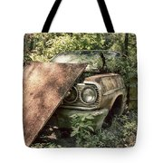 Rusted Beauty Tote Bag