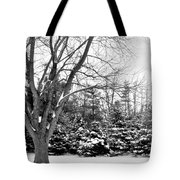 Rustic Chill Tote Bag