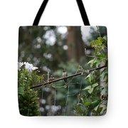 Rustic Serenity Tote Bag by Cynthia Marcopulos