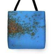 Rusty Islands Tote Bag