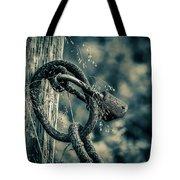 Rusty Lock And Chain Tote Bag