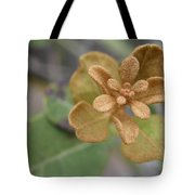 Rusty Lyonia Tote Bag