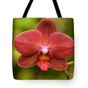 Rusty Orchid Tote Bag