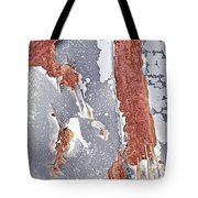 Rusty Silver And Brown Tote Bag