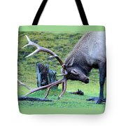 Rutting Bull Elk Tote Bag