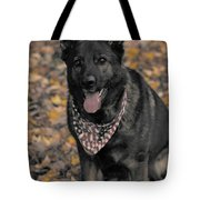 Saber In Autumn Tote Bag