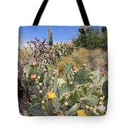 Sabino Canyon 2 Tote Bag