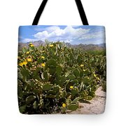 Sabino Canyon 3 Tote Bag
