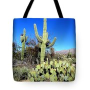 Sabino Canyon Tote Bag